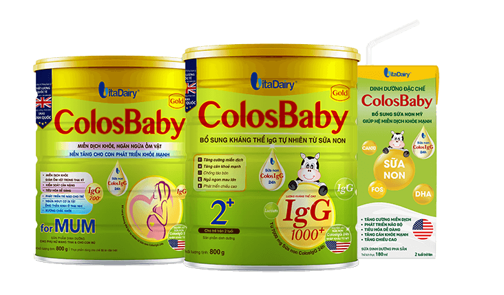 ColosBaby Gold 2+